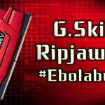 Processor i7-6700K #EbolaBuild